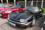 Classic Jaguar XJS - Jaguar Forums UK Brighton Meet 2016 - carphile.co.uk