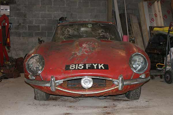 Hedge-find-e-type
